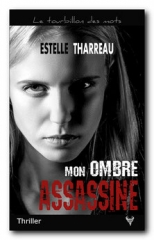 mon-ombre-assassine.jpg